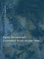 Agnes Bradstreet Channelled from Slower Time