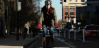 The Design Bible That Changed How Americans Bike in Cities