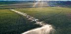 Lots Of Irrigation May Send Rain Elsewhere
