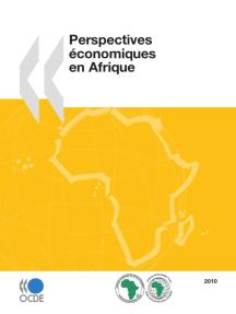 Perspectives économiques en Afrique 2010