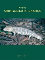 Keeping Shingleback Lizards