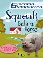 Squeak Gets a Home, Life on the Farm for Kids, IV
