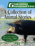 A Collection of Animal Stories, Sanctuary Tales II