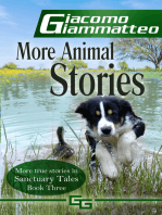 More Animal Stories, Sanctuary Tales, III