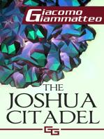 The Joshua Citadel, The Last Battle