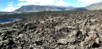 Tree Rings Shed Light On Past—and Future—droughts