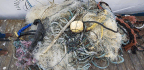 The Trash Patch In The Pacific Is Many Times Bigger Than We Thought