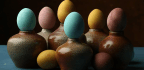 Natural Dyes For Easter Eggs From Fresh Vegetables, Spices