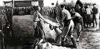 Timeline Of The Boxer Rebellion