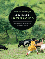 Animal Intimacies