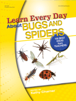 Learn Every Day About Bugs and Spiders