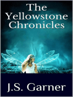 The Yellowstone Chronicles