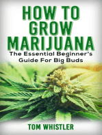 How to Grow Marijuana