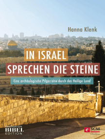 In Israel sprechen die Steine: Eine archäologische Pilgerreise durch das Heilige Land