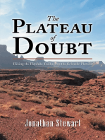 The Plateau of Doubt