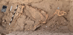 This Ancient Nubian Horse Got A Surprising Burial