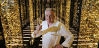 'It Was Harder Than Military Service' - French Chef On Working For Joel Robuchon