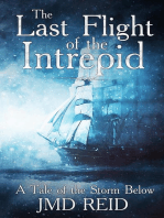 The Last Flight of the Intrepid (A Tale of the Storm Below)