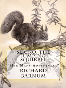 """Slicko, The Jumping Squirrel: """"Her Many Adventures"""""""