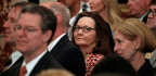 The CIA Needs an Independent Thinker—Not Gina Haspel