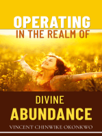 Operating in the Realm of Divine Abundance