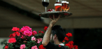 How Much Do Waiters Really Earn in Tips?