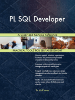 PL SQL Developer A Clear and Concise Reference