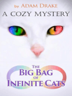 The Big Bag of Infinite Cats