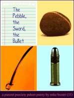 The Pebble, the Sword, the Bullet