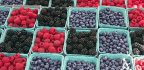 Tips For Using Summer-ish Berries, Now In Season