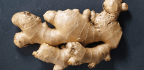 5 Ways to Benefit from Ginger