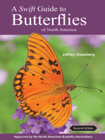 A Swift Guide to Butterflies of North America