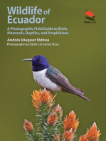 Wildlife of Ecuador