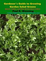 Gardener's Guide to Growing Garden Salad Greens