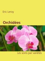 Orchidées: Les soins par variétés