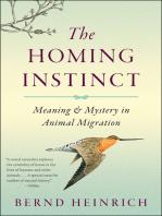 The Homing Instinct