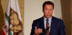 Schwarzenegger Won't Vote For Leading GOP Candidates For Governor