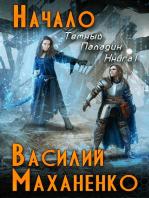 Начало (Темный Паладин. Книга #1) ЛитРПГ серия
