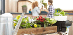5 Mistakes You're Making When Purchasing Garden Supplies