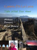 Camino De La Luna - Take What You Need (Without Pictures)