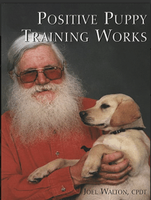 POSITIVE PUPPY TRAINING WORKS