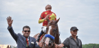 Justify Wasn't Bob Baffert's Only Winner At Belmont Park On Saturday