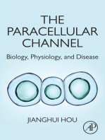 The Paracellular Channel
