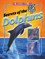 Secrets of the Dolphins