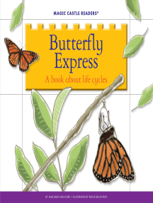 Butterfly Express: A Book about Life Cycles