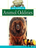 True Stories of Animal Oddities