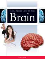 Take a Closer Look at Your Brain