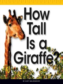 How Tall Is a Giraffe?