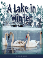 A Lake in Winter