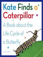 Kate Finds a Caterpillar